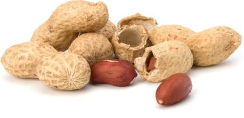 peanut satay