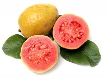 guawa guava