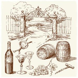 wino w technologii wirujących stożków
