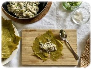 greckie liście winogron