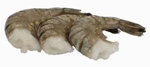 royal shrimp