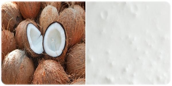 frozen coconut mousse