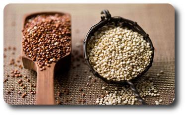 quinoa właściwości