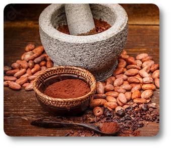 ziarna kakaowe