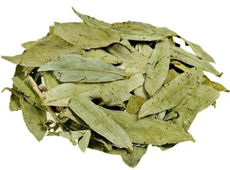 liście curry
