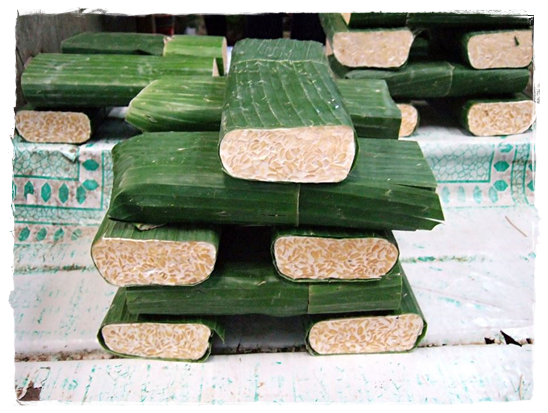 indonesian vegan tempeh