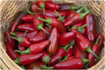 papryczki chili marynowane