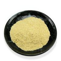 harina de maiz amarillo precocida