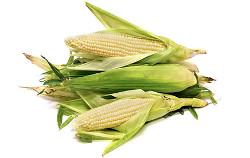 mąka kukurydziana biała